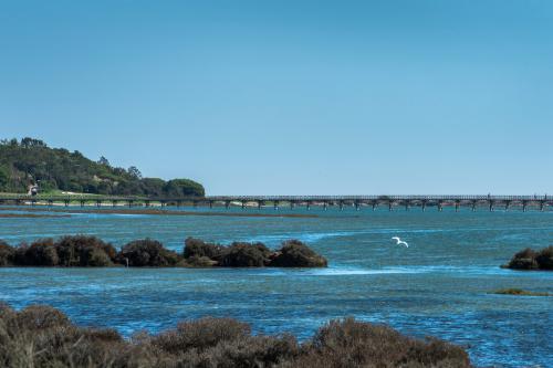 Ria Formosa in Algarve